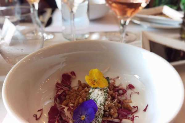 Starting course with edible flowers during Coleman Winemakers Dinner
