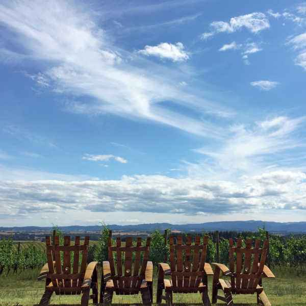 Guest seating facing the vineyard lawn