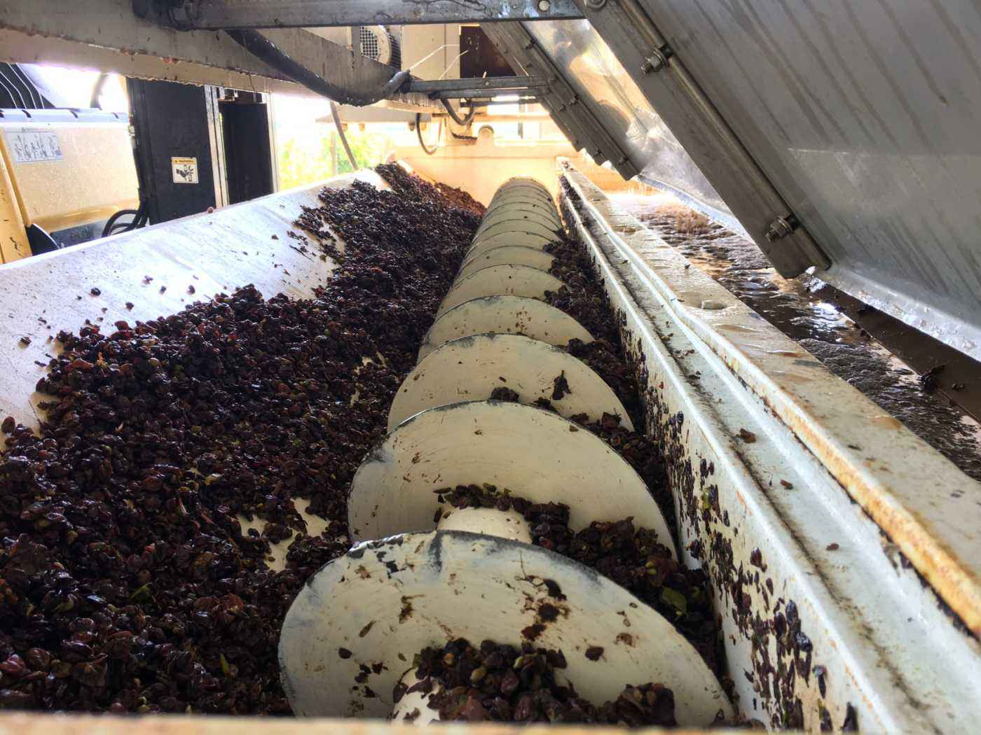 Wine press grape husks