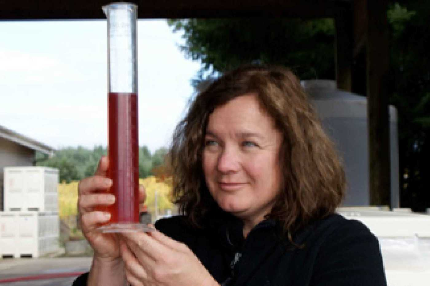 Kim Coleman, Coleman Vineyards winemaking