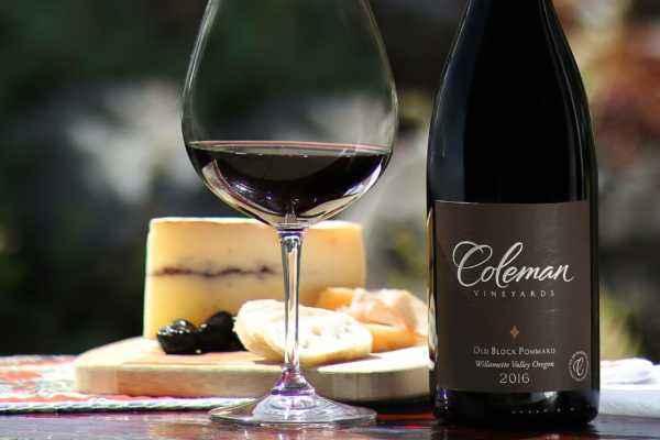 2016 Pinot Noir Old Block Pommard bottleshot